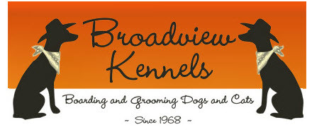 Broadview Kennels - Review